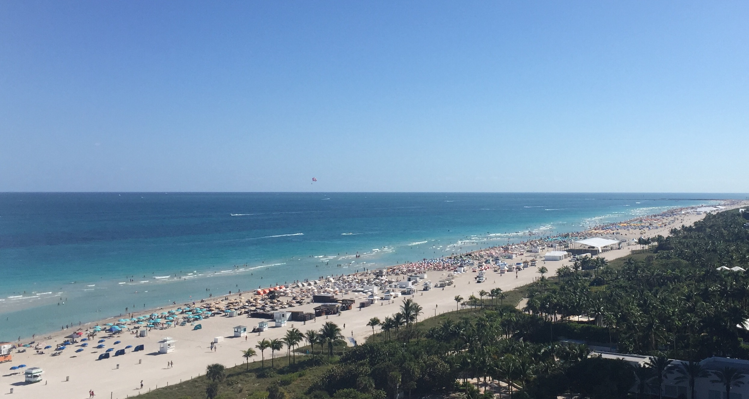 Bianca Miami Beach View